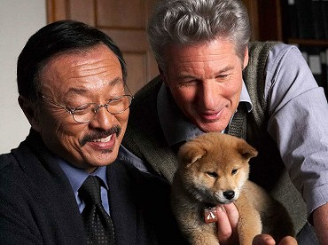 War Dogs Movie Cz