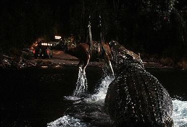 Výsledek obrázku pro Jezero (1999)**