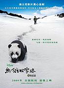 Spustit online film zdarma Dobrodružství s pandou