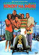 Cover k filmu Kokosy na sněhu (1993)