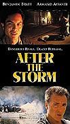 Spustit online film zdarma Po bouři