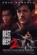 Spustit online film zdarma Karate tiger 6: Nejlepší z nejlepších 2