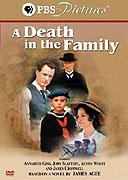 Smrt v rodinA� (TV film)
