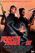 Spustit online film zdarma Karate tiger 2: Zuřící blesk