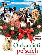Film Tucet vánočních psů / O dvanácti pejscích / Dvanáct vánočních pejsků ke stažení - Film Tucet vánočních psů / O dvanácti pejscích / Dvanáct vánočních pejsků download