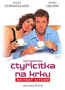 Poster k filmu Čtyřicítka na krku (TV seriál)