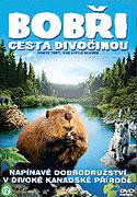 Spustit online film zdarma Bobři - cesta divočinou