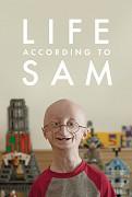 Spustit online film zdarma Velký život malého muže
