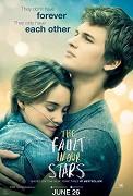 Cover k filmu Hvězdy nám nepřály (2014)