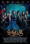 Poster k filmu Čarovný les