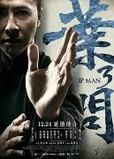 Spustit online film zdarma Yip Man 3
