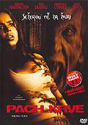 Poster k filmu Pach krve