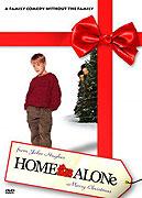 Poster k filmu        Sám doma