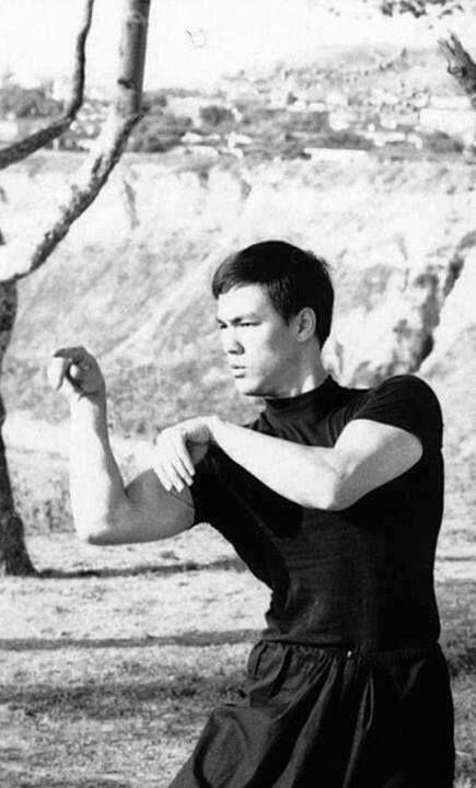 Málokdo ví, že Bruce si osvojil i tradiční styl kung fu - mantis fist