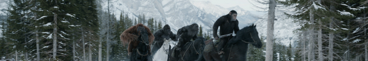 (2017) War for the Planet of the Apes