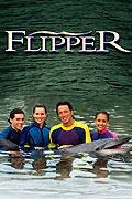 Delfín Flip 1995