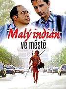 Malý indián ve městě _ Un indien dans la ville (1994)