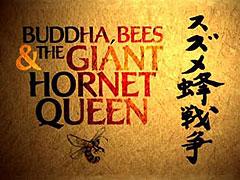 Buddha, včely a obří sršně _ Natural World: Buddha, Bees and the Giant Hornet Queen (2006)