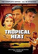Poster k filmu        Vražedné pobřeží (TV seriál)