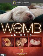 Zvířata v děloze _ Animals in the Womb (2006)