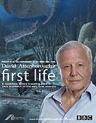 První život _ David Attenborough's First Life (2010)