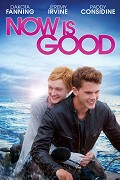 Teď a tady _ Now Is Good (2012)