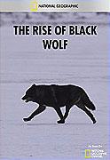 Vzestup černého vlka