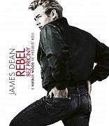 Poster k filmu Rebel bez príčiny
