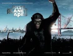Poster undefined          Zrození Planety opic