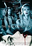 Černá Dahlia