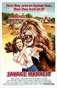Obklíčeni lvy