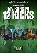 My kung-fu 12 kicks
