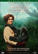Gorily v mlze _ Gorillas in the Mist: The Story of Dian Fossey (1988)