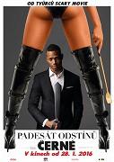 Poster undefined          Padesát odstínů černé