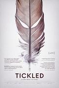 Poster undefined          Polechtat pravdu