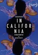V Kalifornii