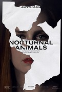 Poster undefined         Nocturnal Animals