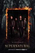 Poster undefined          Lovci duchů (TV seriál)