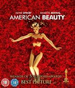 Poster undefined          Americká krása