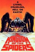 Království pavouků