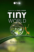 poster k filmu Tiny world