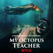 Poster undefined          Moje učitelka chobotnice
