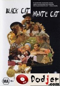 Crna mačka, beli mačor 1998