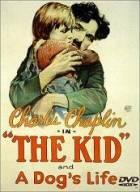 Kid (The Kid)