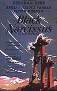 Cerný Narcis