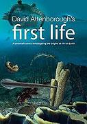 První život