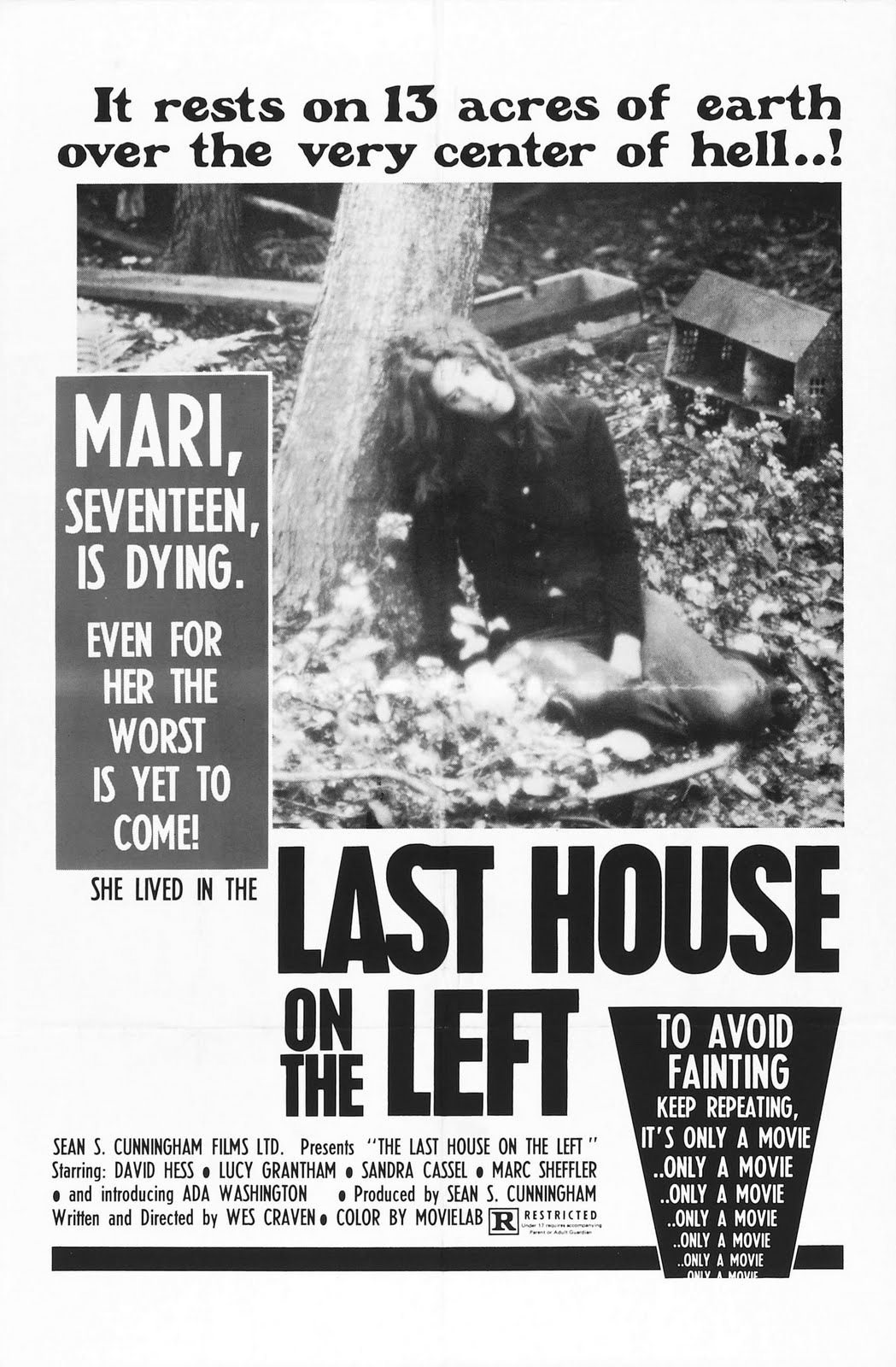 last_house_on_the_left_poster_01.jpg