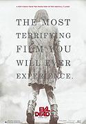 Poster k filmu        Lesní duch