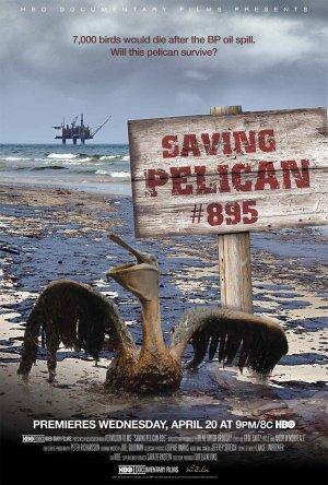 Záchrana pelikána č. 895