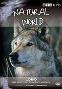 Lobo: The Wolf That Changed America